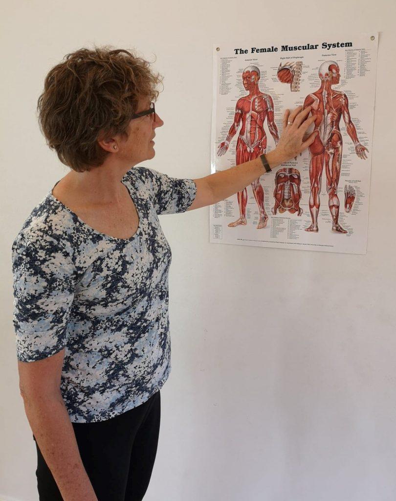 Lise Marianne Rasmussen, Afspændingspædagog / Psykomotorisk terapeut ser på muskelplanche